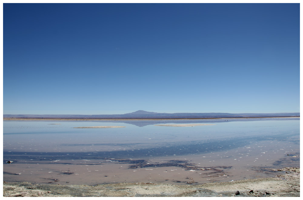 Nordchile, die Laguna Chaxa im Salar de Atacama