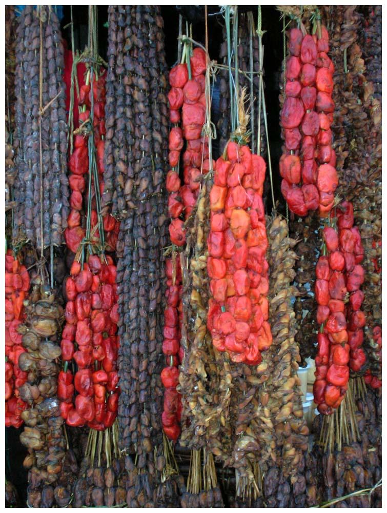 piure pyura chilensis chilenische aszidie. Black Bedroom Furniture Sets. Home Design Ideas