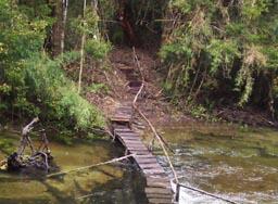 Sendero a la Laguna Sargazo