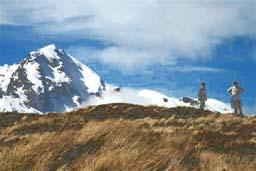Paso Desolación, Cerro La Picada