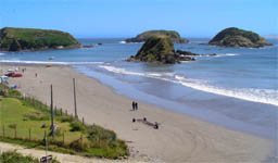 Islotes de Puñihuil