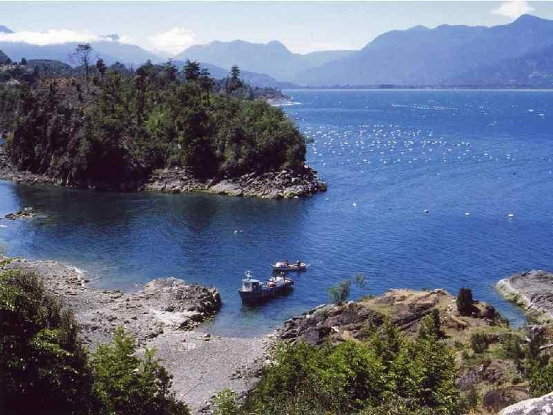 Estuario de Reloncavi: In kaum einem Reiseführer beschrieben ist der Estuario de Reloncavi, der Fjord am Beginn der Australregion Chiles, nur 85 km von Puerto Varas entfernt, mit den Hauptorten Ralún, Cochamó und Puelo. Zu unrecht: Äußerst reizvoll und abenteuerlich ist die Fahrt vorbei an Lachs- und Muschelfarmen bis Puelche, weiter mit der Fähre nach La Arena, dann über das erste Teilstück der Carretera Austral nach Puerto Montt und schließlich zurück nach Puerto Varas.