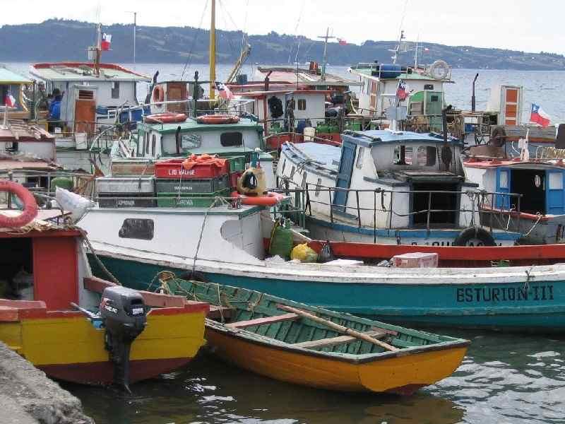 Chiloé: Auf eine Fläche von  9300 km² leben auf Chiloé ca. 135.000 Einwohner. Abseits der Ruta 5, der Panamericana, die bei Quellón endet, gibt es kaum asphaltierte Straßen, sodass die meisten Orte dort nur über Schotterpisten zu erreichen sind. Der Großteil der Inselbewohner lebt vom Fischfang und Kunsthandwerk. Auf den örtlichen Märkten findet man ein reichhaltiges Angebot an Korbwaren, Wollprodukten und  liebevollen Arbeiten aus Muschelschalen.